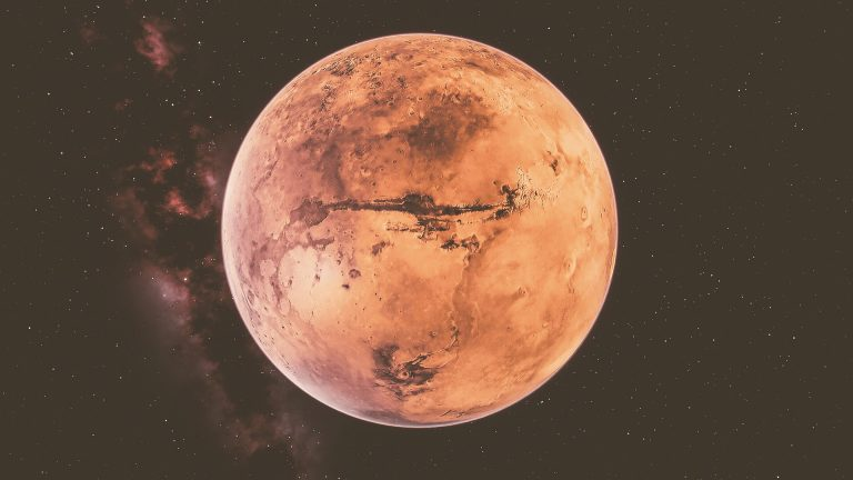 Musk Reveals the Price of The Ticket to Mars